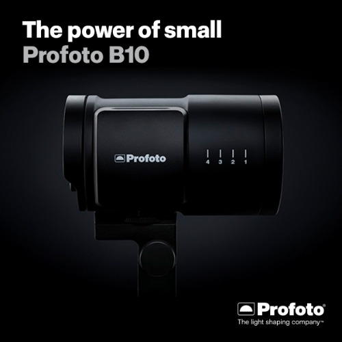 Profoto B10 250 Duo Kit